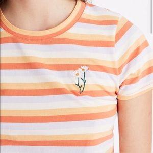 Madewell and Gap T-shirt Bundle